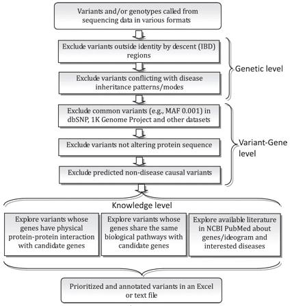 Mendelian disease analysis framework
