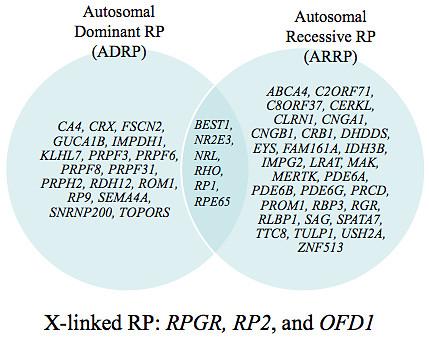 retinitis pigmentosa genes dominant recessive