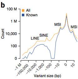 Dutch genome SV calls