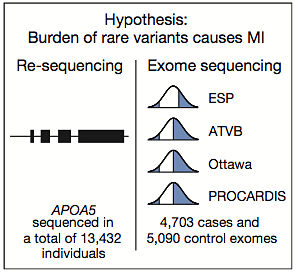 Rare variant sequencing