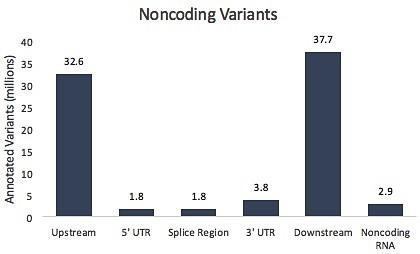 noncoding dbSNP 147