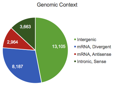 Genomic lncRNAs