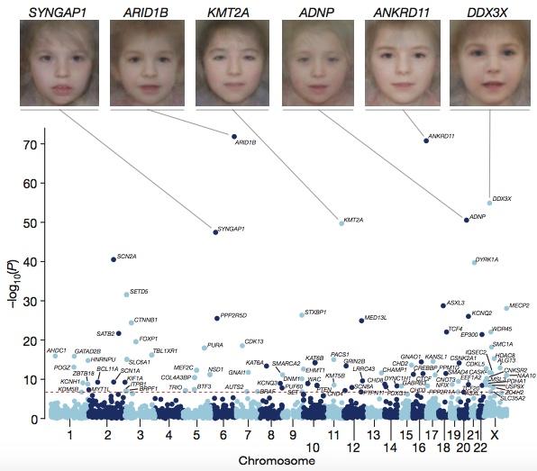 DD Associated genes